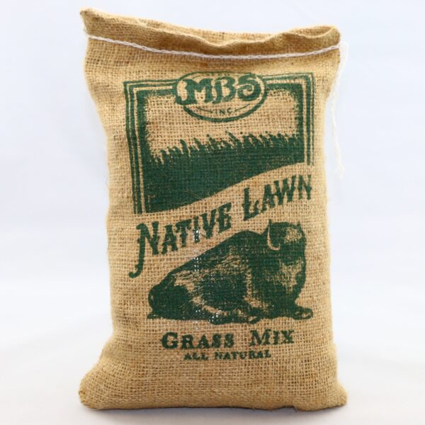 Native Lawn Grass Mix