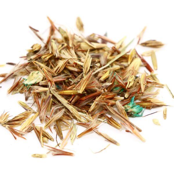 Native Prairie Grass Mix