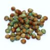 Fastgrass 5 Hybrid Sorghum Sudangrass Seed (with seed treatment)