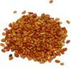VNS Alfalfa seed