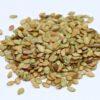 Pensacola Bahiagrass Seed