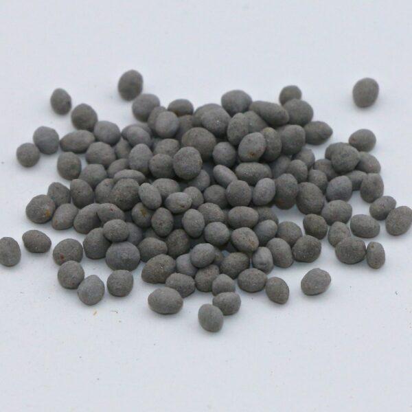 Balady 1 Berseem Clover seed (coated/inoculated)