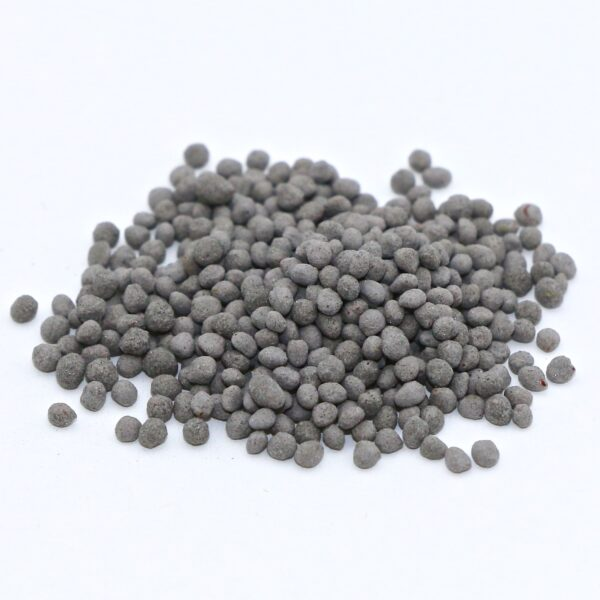 Medium Red Clover seed (coated/inoculated)