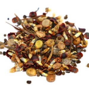 TexOkla Wildflower Mix 1/2 lb bag