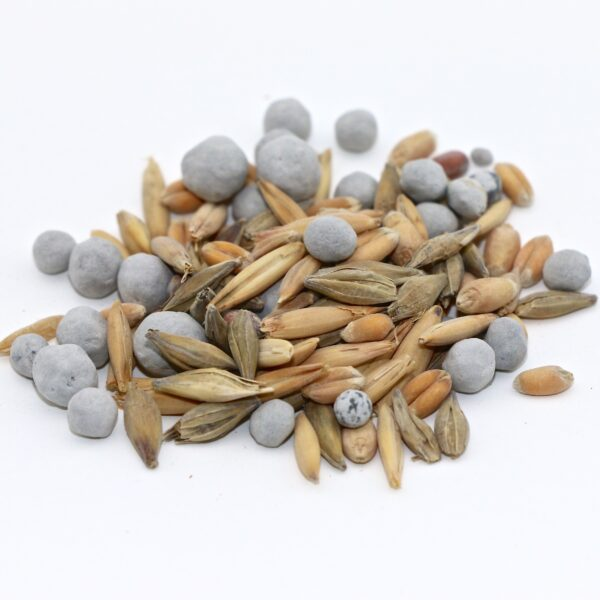 Cover-All Fall Cover Crop Mix Seed
