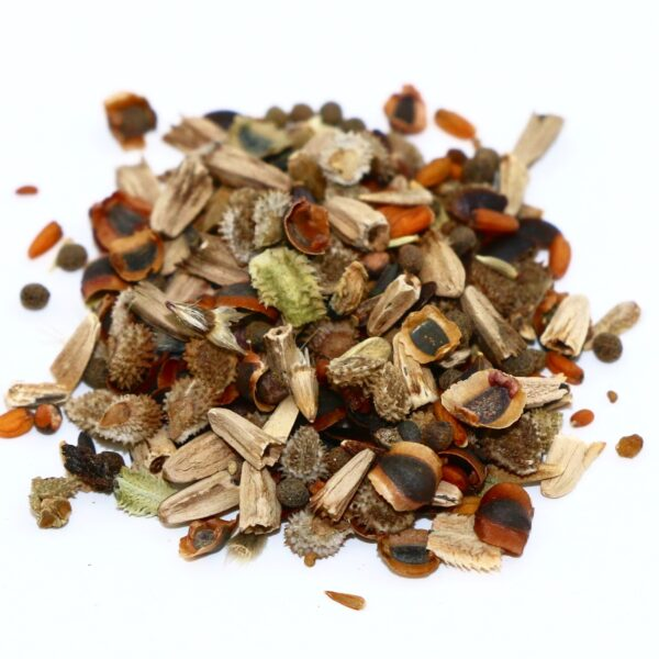Bee & Butterfly Flower Mix seed